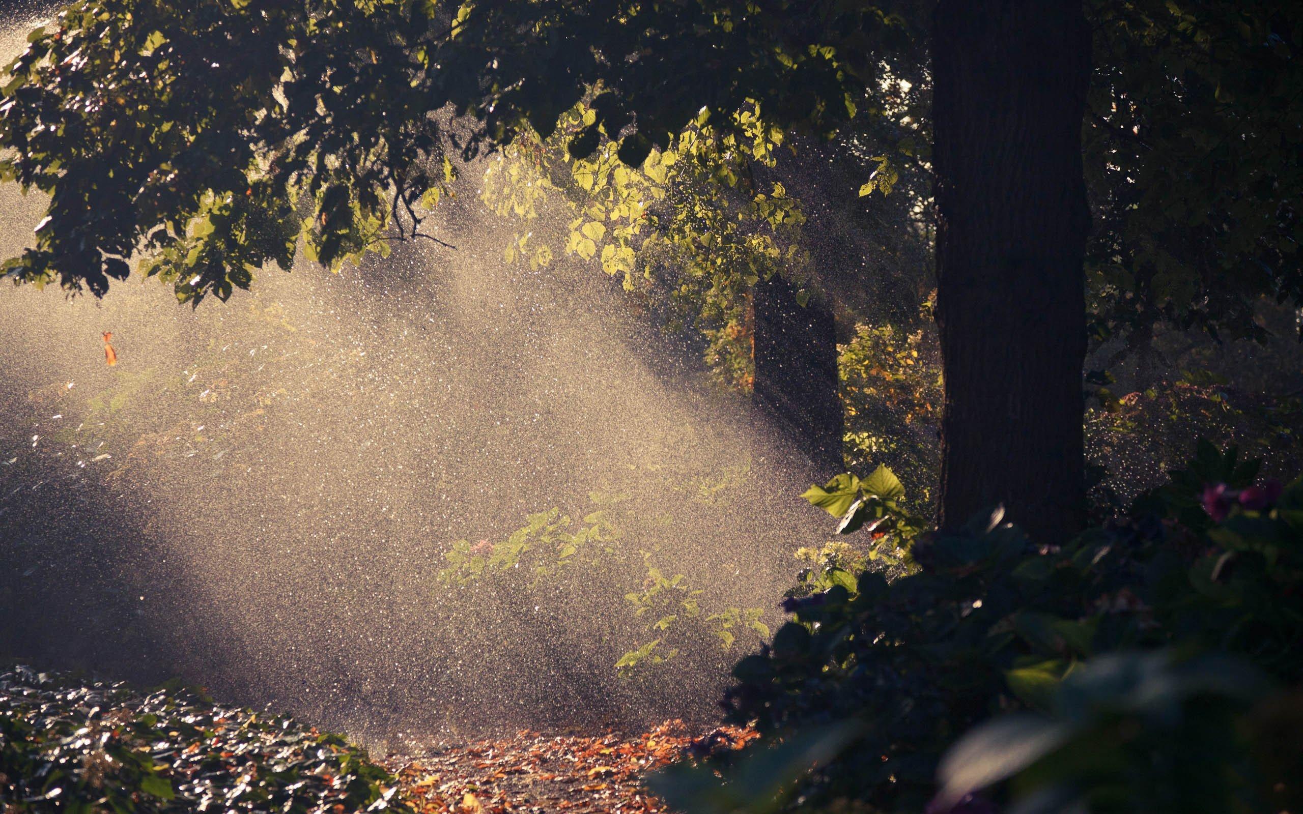 Синоптик дав детальний прогноз погоди на серпень