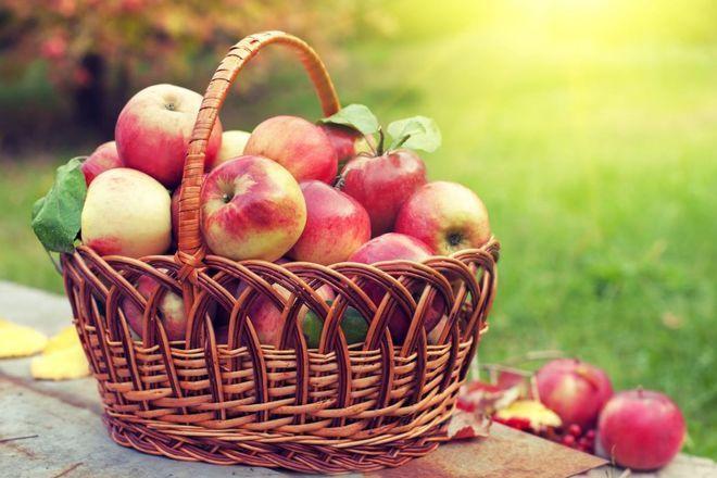 Яблочный спас 2020 когда отмечать