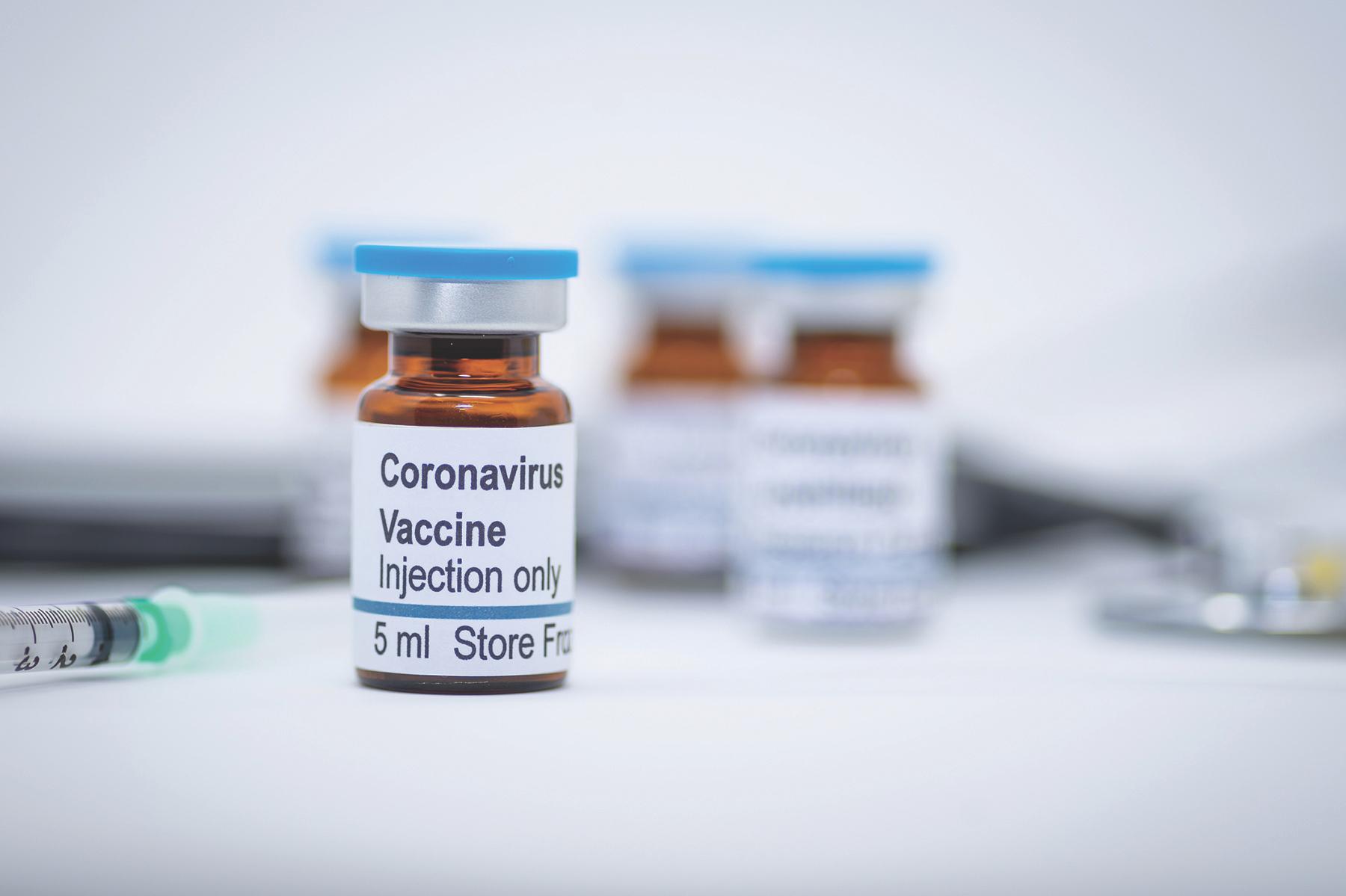 Ученые выявили «родственника» коронавируса взамороженных летучих мышах